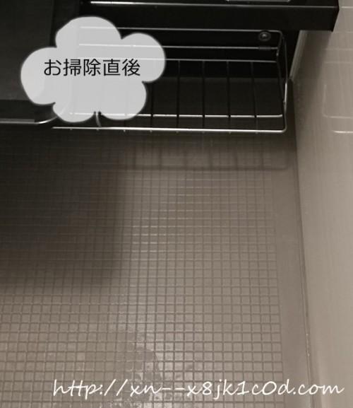 ブラシで浴室の床を洗った直後