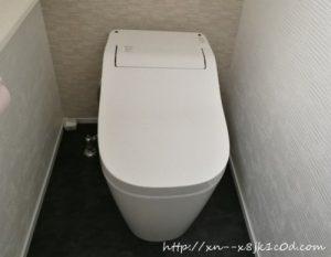 トイレの床が黒くて大変