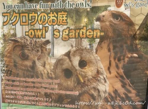 フクロウのお庭看板