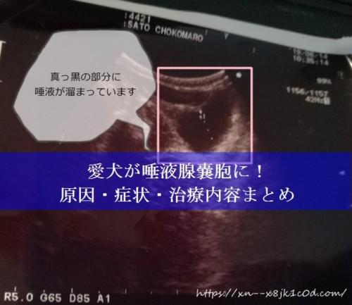 唾液腺嚢胞バナー